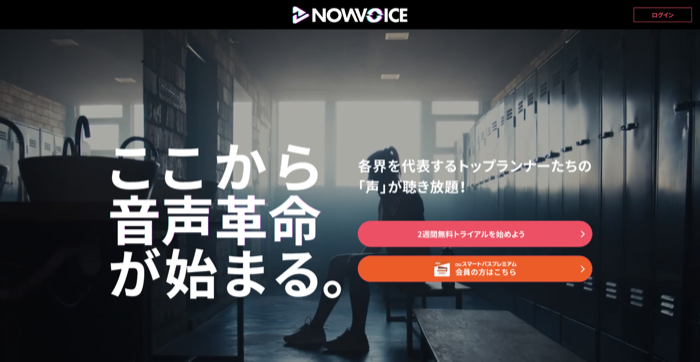 NowVoice